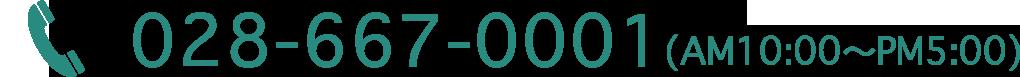 028-667-0001